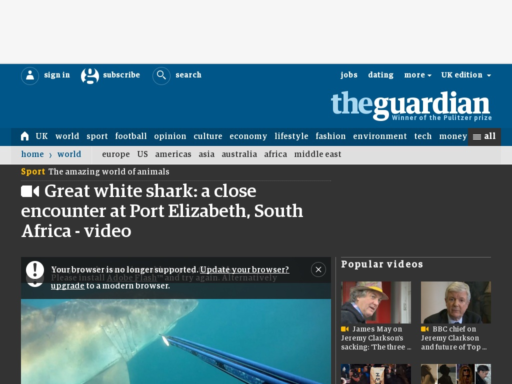 Random link to http://www.theguardian.com/world/video/2013/jul/30/great-white-shark-south-africa-video